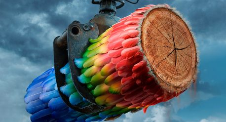 Rette den Amazonas – Greenpeace Austria – DDB Wien